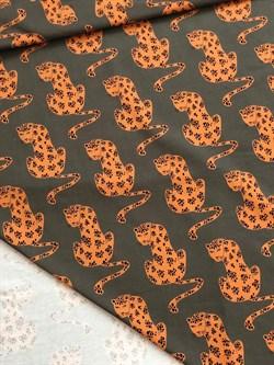 Леопарды - фото 4621